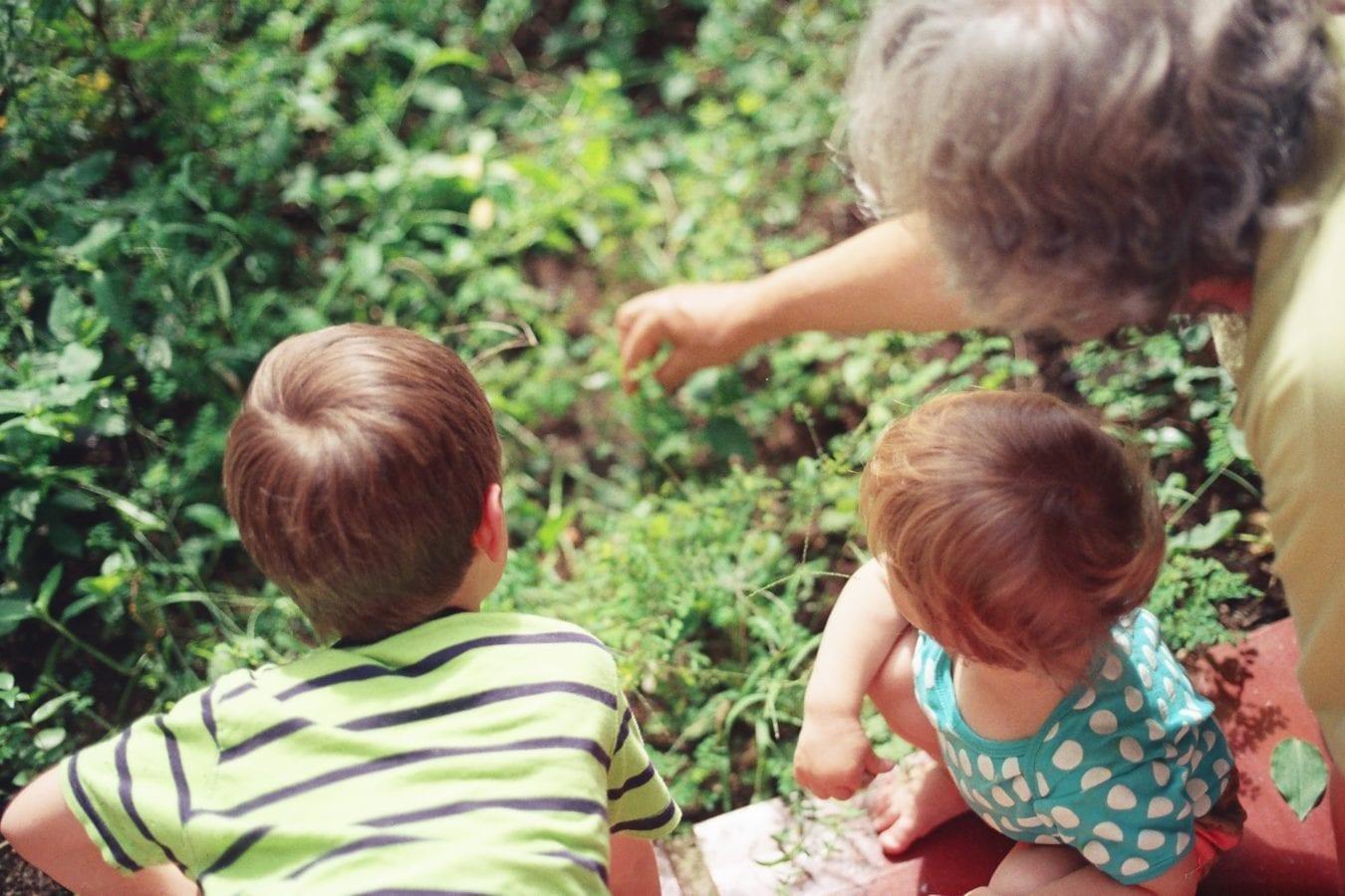 les petits enfants et leurs grand parents